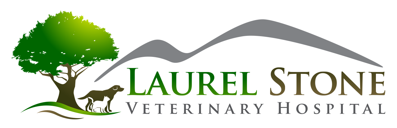 LAUREL STONE Veterinary Hospital